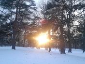 Sceeching sunlight in winter