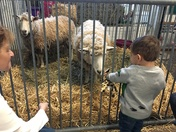 Brayden and Lucas Love their First Farm Show!