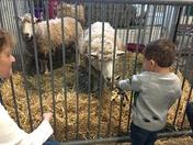 Brayden and Lucas Love their First Farm Show!