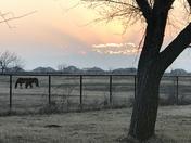 Love Oklahoma Sunsets