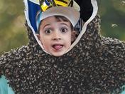 Bee crazy!