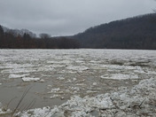 Video of Allegheny river in Franklin, PA