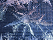 Frost Feathers & Ice