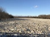 Ice Dam on the Saco River