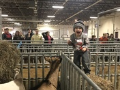 Jaxson's first time on the last day of the  2018 Pa Farm Show