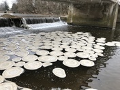 Ice Disks on the Conestoga River