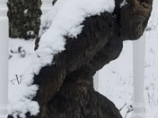 Bigfoot in the snow !