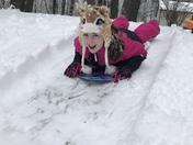 Snow day sledding