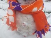 Tigers snowman