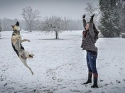 Sadie practicing her snowball catches