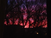 Morning Sunshine at 6:37am