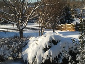 Sunny day after snow in clemmons