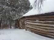 Snowy Cedro