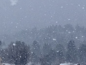 Snowing in Gallina, NM