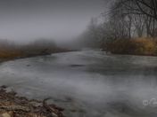 Foggy Middle River