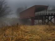 Beacon in the Fog