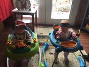 Pats babies!