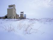 Iconic Prairies
