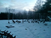 The evening View at Deer Mountain Lodge Dummer New Hampshire.