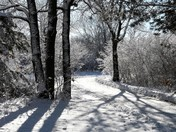 Lake Zorinsky Winter Scenes