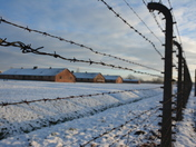 Barbed fence of Auschwitz