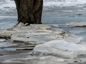 Ice Jam on the Susquehanna River at Long Level Pa.