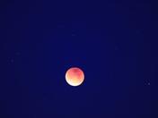 Supermoon/Eclipse/Bluemoon