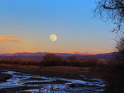 Supermoon and near full moon