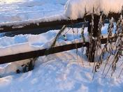 "7"" Snowfall in Pittsford 2/2/18"