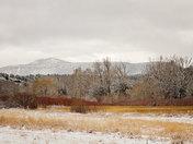 Snowy Morning of Pecos