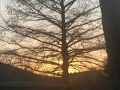 Timberlane Subdivision Sunset