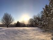 Tree Flynn Hill Snowy Morning Sunrise