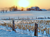 Farmland Winter Sunrise