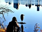 cameraman and bird