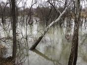 Harrods Creek