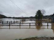 Flooding Fredericksburg ky