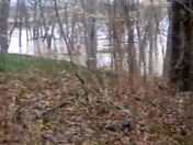 Nolin river behind parents house in Sonora Kentucky