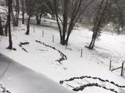 Snow in Weimar