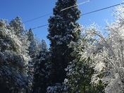 Adrienne from Garden Valley Ca. About 9am this morning it's just beautiful!
