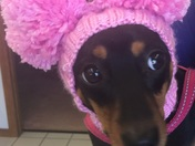 """Weather Weenie"" says it's cold outside so wear your hat today!!"