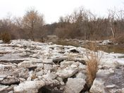 Humber River: receeding floodwaters leave ice debris along the river's edge
