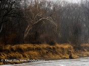 Nature's 'painting' along the Raccoon River today.