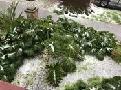 HAIL!!!