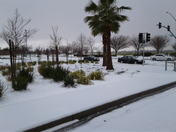 Snow?... in North natomas...... yes!