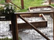Elk Grove Hail Storm