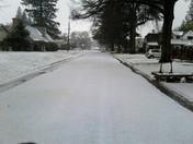 Woodlake Neighborhood This Afternoon
