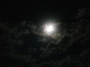 Moonlight over winterset