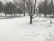 Snowing in Elizibeth town New York