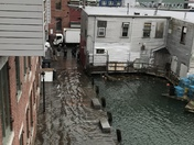 High Tide in the Old Port