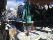 Beautiful snow near Sonora, CA